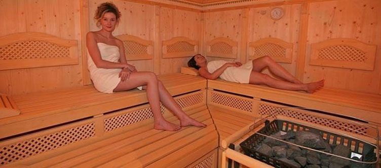 Leamwirt Wellness Sauna