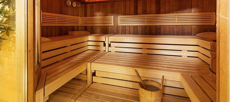 Leipzigerhof Wellness Sauna