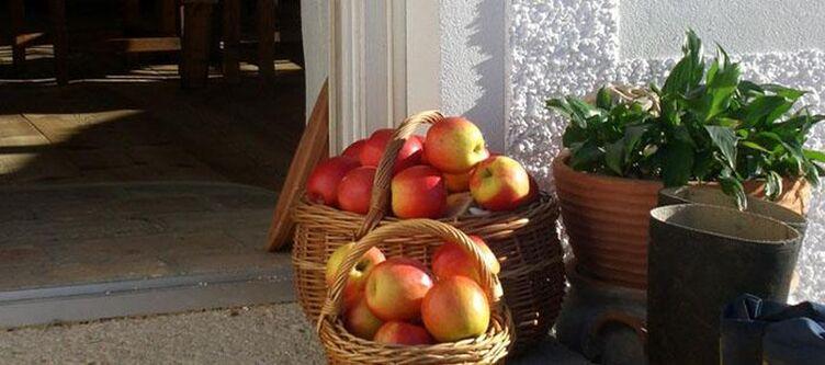 Leitenmueller Obst2