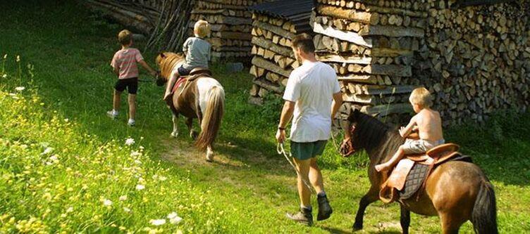 Leitenmueller Pferde Ausritt
