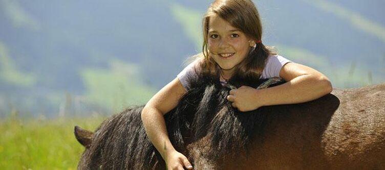 Leitenmueller Pferde