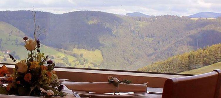 Lilienfein Restaurant Ausblick