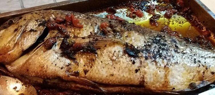 Loasi Kulinarik Fisch