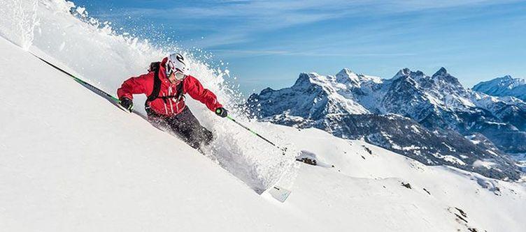 Lodge Ski