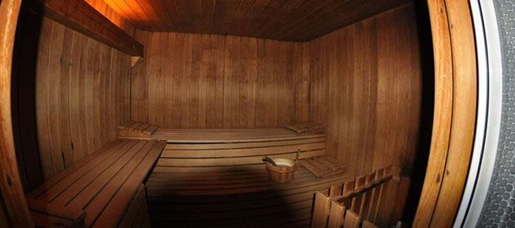 Male Wellness Sauna