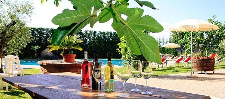 Molinalda Garten Wein2
