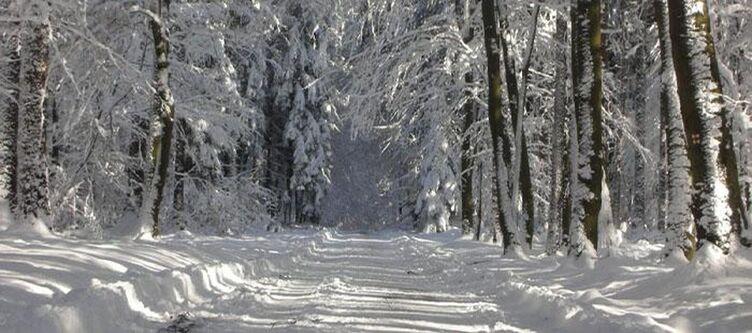 Muellers Umgebung Winter