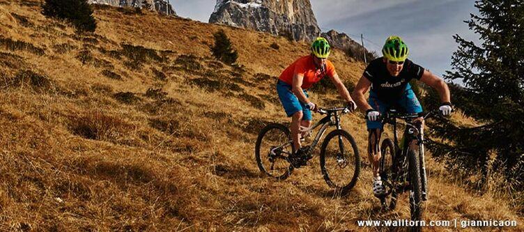 Paladin Mountainbiken