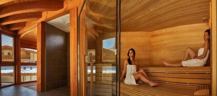 Paladin Wellness Sauna