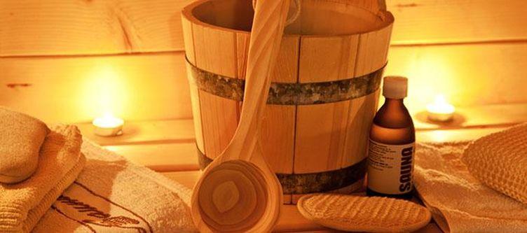 Phoenix Wellness Sauna