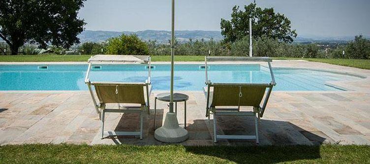 Poggio Pool Liegen