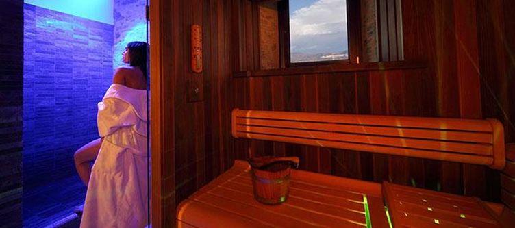 Relais Wellness Sauna