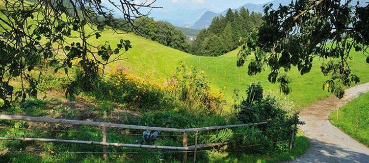 Rieder Garten