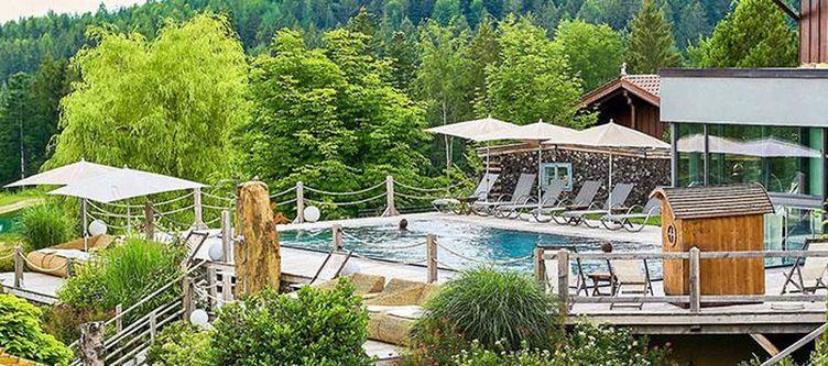 Riedlberg Pool