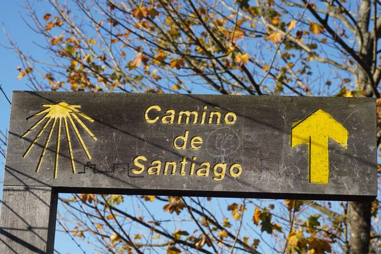 S Cape Travel Camino Segnal Madera