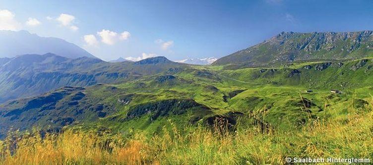 Saalbach Sommer Landschaft2