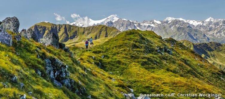 Saalbach Sommer Wandern Panorama 1