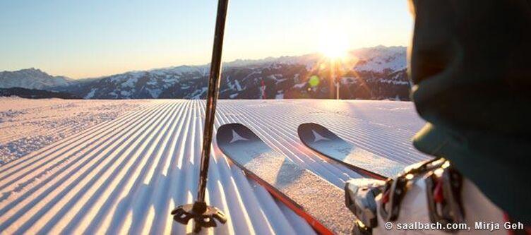 Saalbach Winter Ski Detail 2