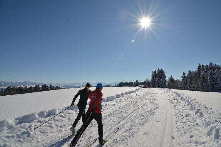 Scheidegg Langlauf 7188