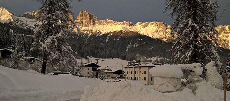 Scoiattolo Panorama Winter2