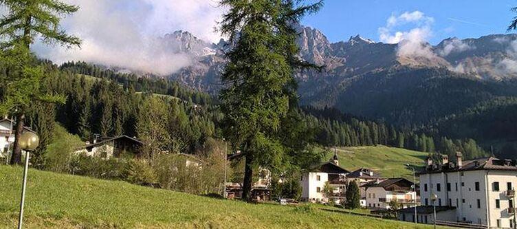 Scoiattolo Panorama4