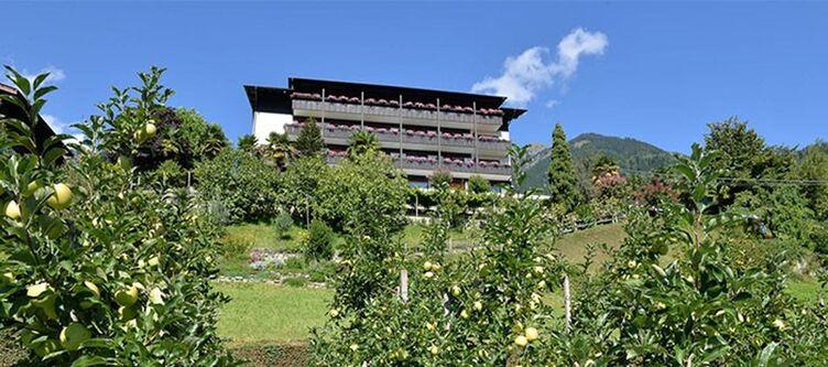 Sonnenhof Hotel2 1