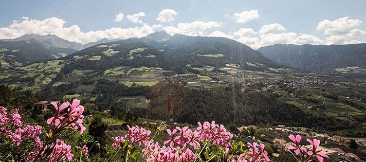 Sonnenhof Panorama