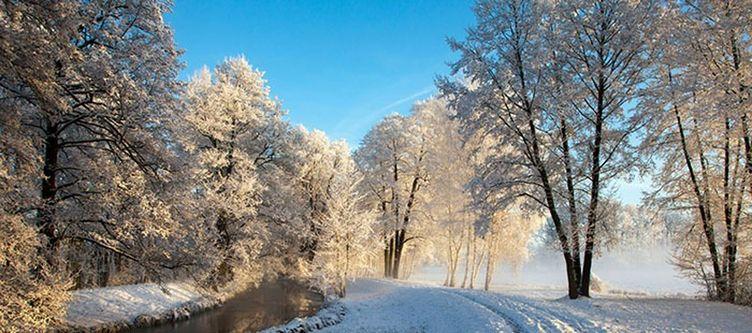 Spreewald Panorama Winter