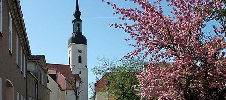 Spreewald Umgebung Stadt