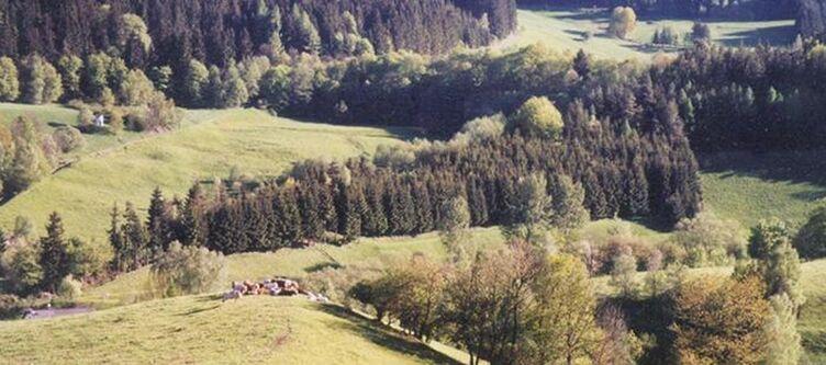 Steiger Panorama