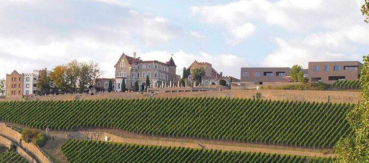 Steinburg Panorama