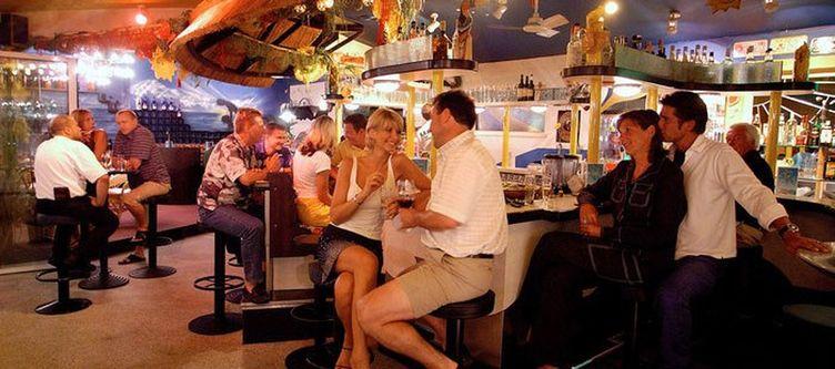 Steiner Bar
