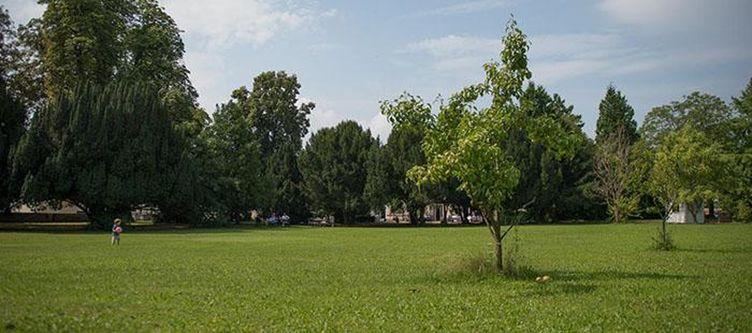 Tillmanns Garten