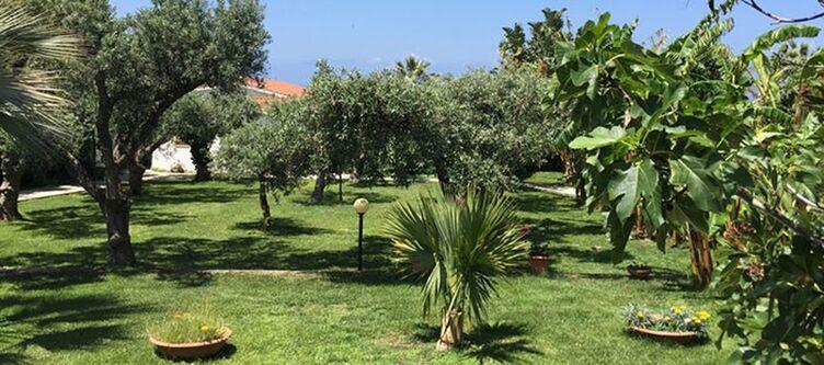 Tonicello Garten2