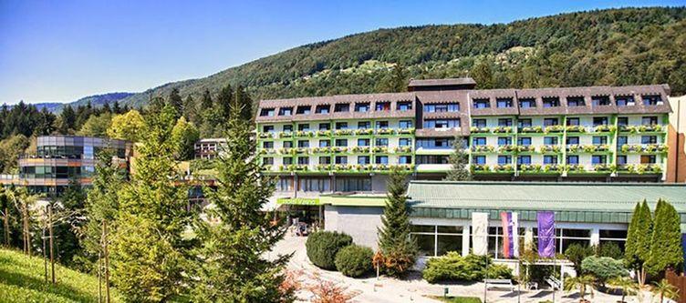 Topolsica Hotel2