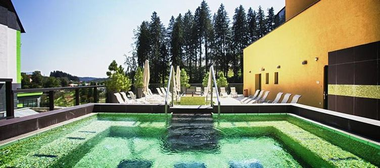 Topolsica Terrasse Pool