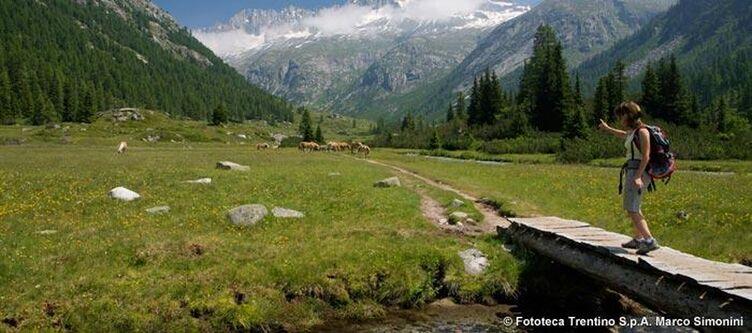 Trentino Wandern Adamellobrenta 3