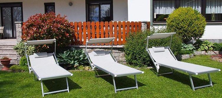Tulpe Garten Liegen
