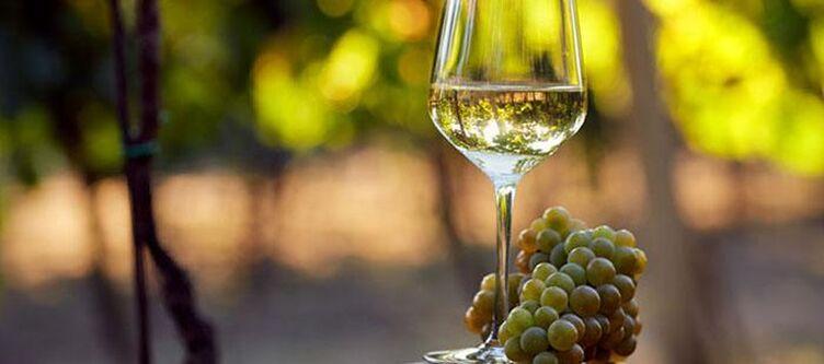 Vega Wein2