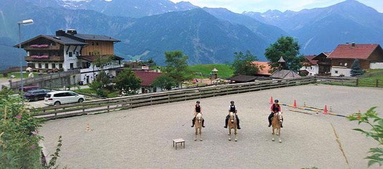 Veitenhof Hotel Pferde