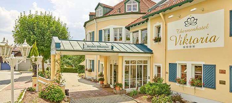 Viktoria Hotel Zufahrt2
