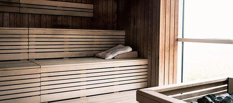 Vital Wellness Sauna2