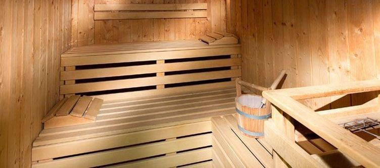 Wiesenegg Sauna