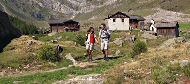 Wiesenhof Wandern2